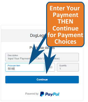 Payment Step Options 01